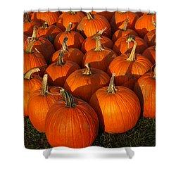 Pumpkin Strike Shower Curtain by LeeAnn McLaneGoetz McLaneGoetzStudioLLCcom