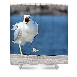 Putting His Foot Down Shower Curtain by Kristin Elmquist