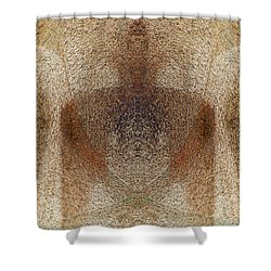 Qi Shower Curtain by Christopher Gaston