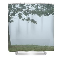 Quiet Fog Rolling In Shower Curtain by Karol Livote