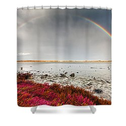 Rainbow By The Lake Shower Curtain by Evgeni Dinev