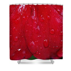 Red And Wet Shower Curtain by Paul Ward