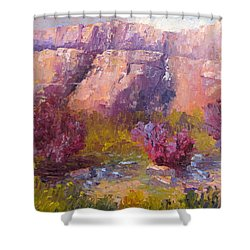 Red Bud Trees Shower Curtain by Terry  Chacon