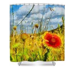 Red Flower In The Field Shower Curtain by Jeff Kolker