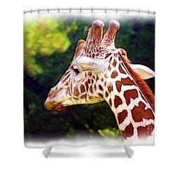 Reticulated Giraffe Shower Curtain by Judi Bagwell
