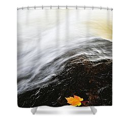 River In Fall Shower Curtain by Elena Elisseeva