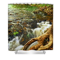 River Rapids Shower Curtain by Elena Elisseeva