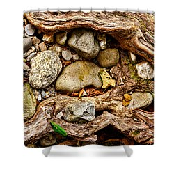 Rocks And Roots Shower Curtain by Christopher Holmes