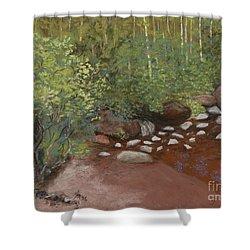 Rocky Mountain Creek Shower Curtain by Ginny Neece