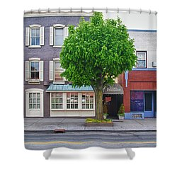 Rue Franklin Shower Curtain by Guy Whiteley