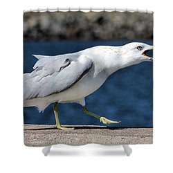 Ruffled Feathers Shower Curtain by Kristin Elmquist
