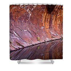 Sandstone Reality Shower Curtain by Mike  Dawson