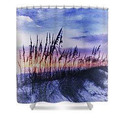 Se Oats 2 Shower Curtain by Skip Nall