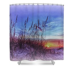 Sea Oats 5 Shower Curtain by Skip Nall