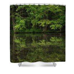Season Of Green Shower Curtain by Karol Livote
