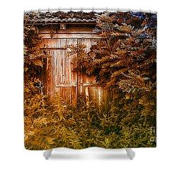 Secret Door Shower Curtain by Jutta Maria Pusl