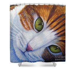 Secrets Shower Curtain by Brian  Commerford