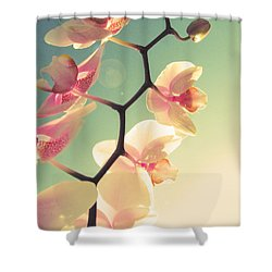 Serenade Shower Curtain by Amy Tyler