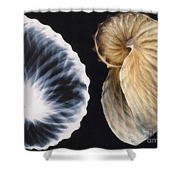 Shell X-ray Shower Curtain by Photo Researchers