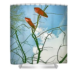 Shoes In The Sky Shower Curtain by Joana Kruse