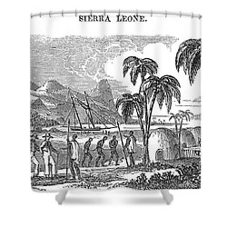 Sierra Leone: Slave Trade Shower Curtain by Granger