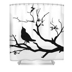 Silhouette: Bird On Branch Shower Curtain by Granger
