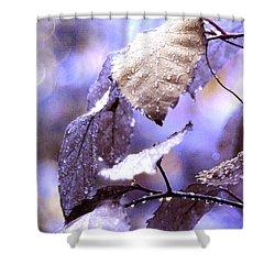 Silver Rain. The Garden Of Dreams Shower Curtain by Jenny Rainbow
