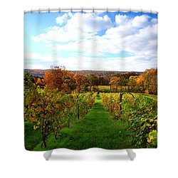 Six Miles Creek Vineyard Shower Curtain by Paul Ge