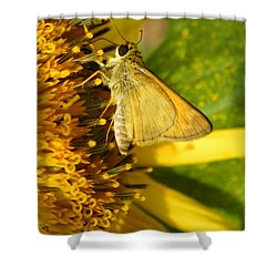 Skipper And Sunflower Shower Curtain by Sandi OReilly