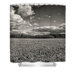 Skyway Shower Curtain by Rachel Cohen
