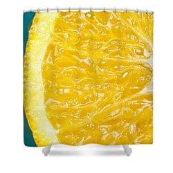 Sliced Orange Shower Curtain by Bill Brennan