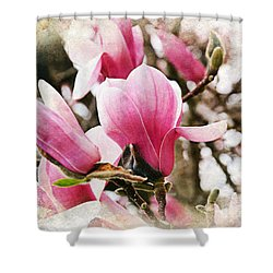Snowy Magnoila Mist  Shower Curtain by Andee Design