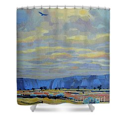 Soaring Shower Curtain by Donald Maier