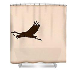 Soaring Sandhills Silhouette Shower Curtain by Carol Groenen