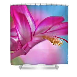 Soft And Delicate Cactus Bloom Shower Curtain by Kaye Menner