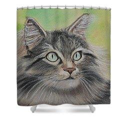 Soft Kitty Shower Curtain by Julie Brugh Riffey