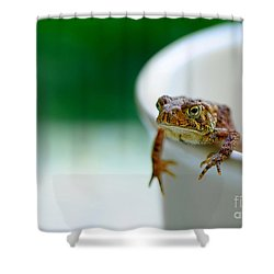 Somebody Needs Coffee Shower Curtain by Lois Bryan