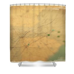 Southeast Us Shower Curtain by Paulette B Wright