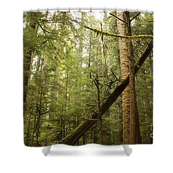Spirit Of The Pacific Northwest Shower Curtain by Carol Groenen