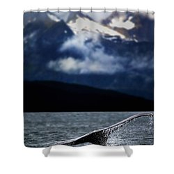 Splash From Tail Of Humpback Whale Shower Curtain by Richard Wear
