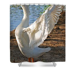 Spread Your Wings Shower Curtain by Lisa Phillips