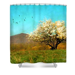 Spring In The Mountains Shower Curtain by Darren Fisher