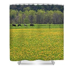 Spring Meadow Flowers Shower Curtain by John Stephens