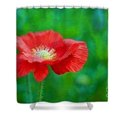 Spring Poppy Shower Curtain by Darren Fisher
