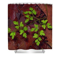 Spring Will Come Shower Curtain by Judi Bagwell