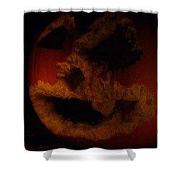 Squirrel One Jack Zero Shower Curtain by Lyle Hatch