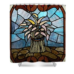 Stained Glass Lc 11 Shower Curtain by Thomas Woolworth