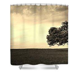 Stand Alone Tree 1 Shower Curtain by Sumit Mehndiratta