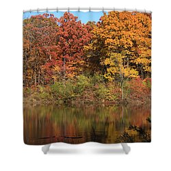 Sterling Pond Shower Curtain by Lyle Hatch