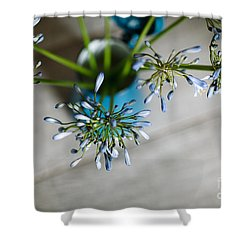 Still Life 04 Shower Curtain by Nailia Schwarz